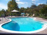 pool shot